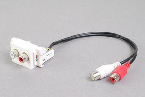 コンセントチップ  コンセント側:RCAメス×2口(赤、白)/ケーブル側:RCAメス×2本(赤、白)