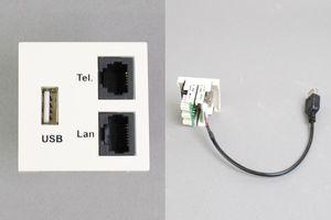 45モジュール(コンセント:USB Aメス+TEL+LAN/内側配線:USB Aメス端子ケーブル+TELおよびLAN圧接コネクタ)