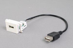 コンセントチップ  コンセント側:USB(Aコネクタ メス)/ケーブル側:USB(Aコネクタ メス)