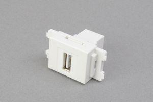 コンセントチップ(スナップインセット品) コンセント側:USB(Aコネクタ メス)/壁内側:USB(Aコネクタ メス) 縦型 白